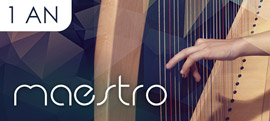 Offre Maestro 1 An