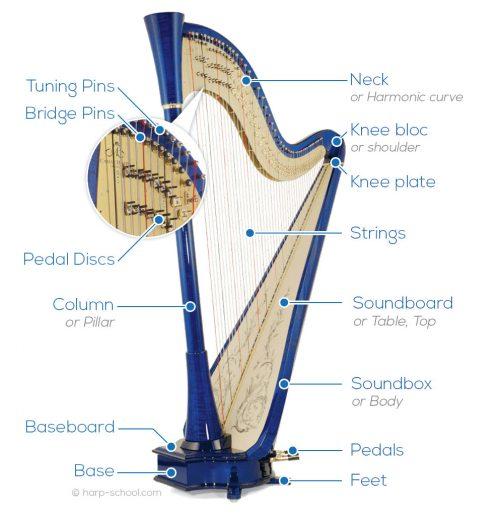 pedal harp parts anatomy scheme
